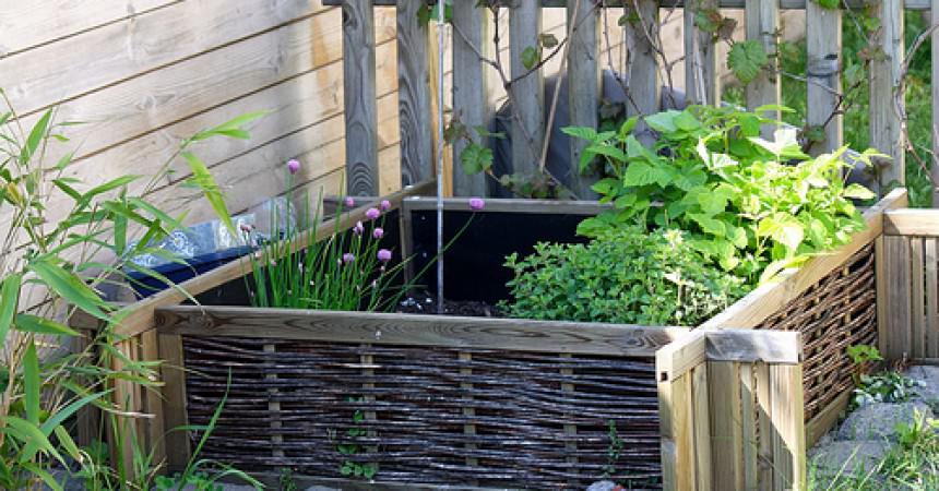 Vive le printemps et mon jardin ma p 39 tite cuisine for Vive le jardin montaigu