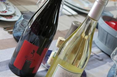 Et si le vin se conjuguait au féminin ?