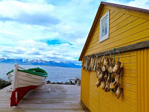 15 jours à la découverte de l'Islande