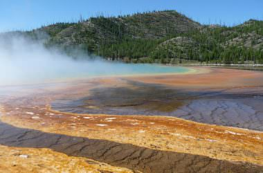 Le Parc National de Yellowstone (Montana, Wyoming, USA)