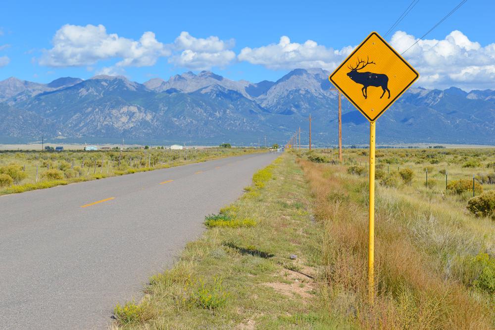 A la découverte du Montana, de Gardiner à Kalispell [mon Wild Wild West USA]