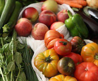 Le Jardin d'Ethan, Eysines : producteur de fruits & légumes locaux [Gironde]