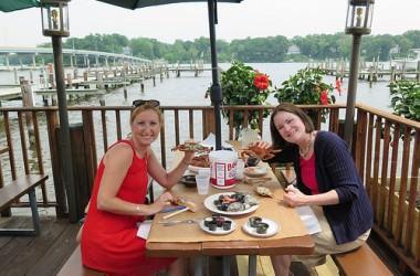 Les crabes bleus  I Maryland