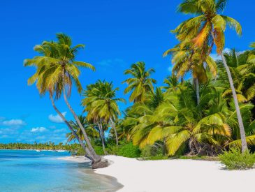 Destination … Guadeloupe