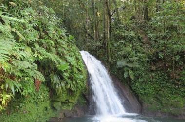 A la découverte de la Guadeloupe, Basse-Terre