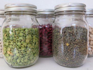 Tout savoir sur … les légumes secs