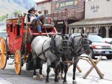 A la découverte du Wyoming, Jackson & Grand Tetton I Wyoming