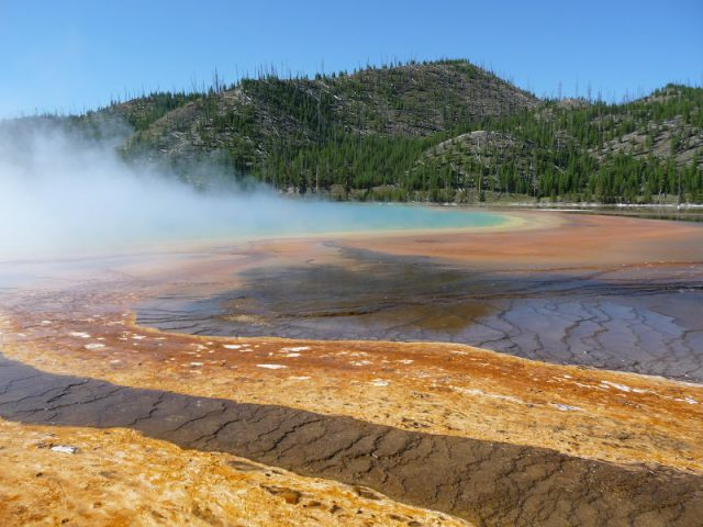 Le Parc National de Yellowstone I Montana & Wyoming