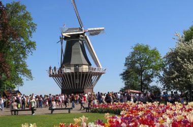 Le Parc de Keukenhof à quelques kilomètres d'Amsterdam pour avoir des tulipes plein les yeux