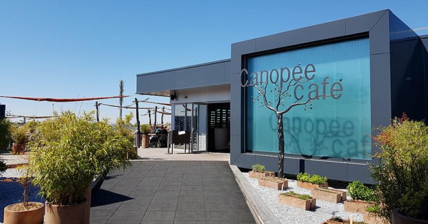 Le canopee caf i restaurant en roof top i m rignac 33 - Merignac soleil magasins ...