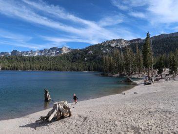 La Sierra Nevada [Californie, USA]