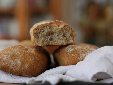 Mes recettes anti-gaspi avec du pain
