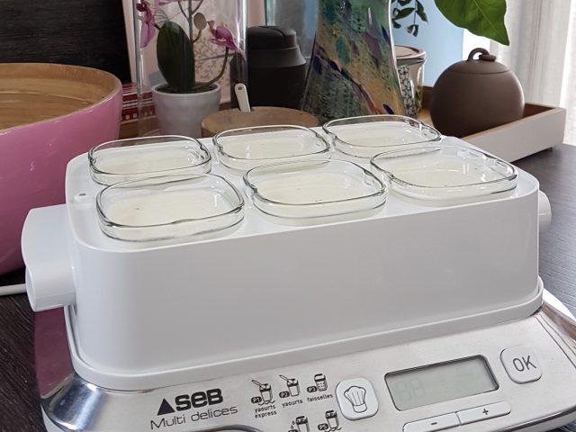 Yaourts parfumés à la vanille et à la lavande