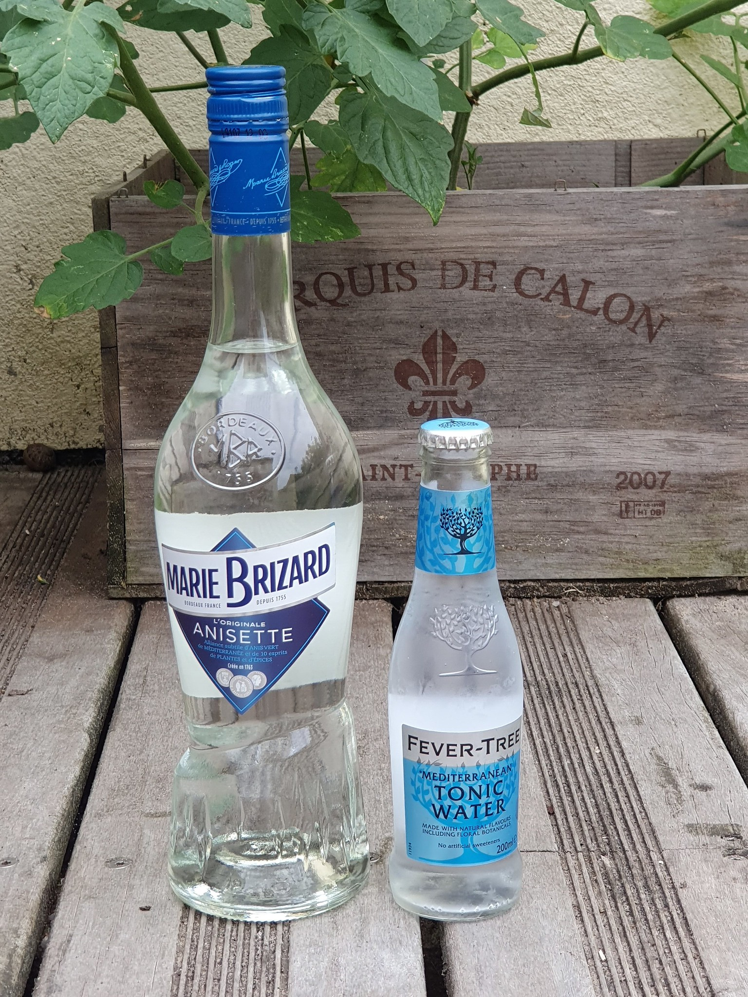 Recette cocktail Anisette Marie Brizard et Tonic Fever Tree
